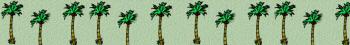 palmdivider