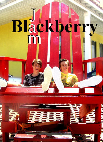 BlackberryJamRedChair