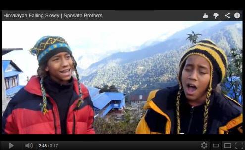 Himalayan Falling Slowly